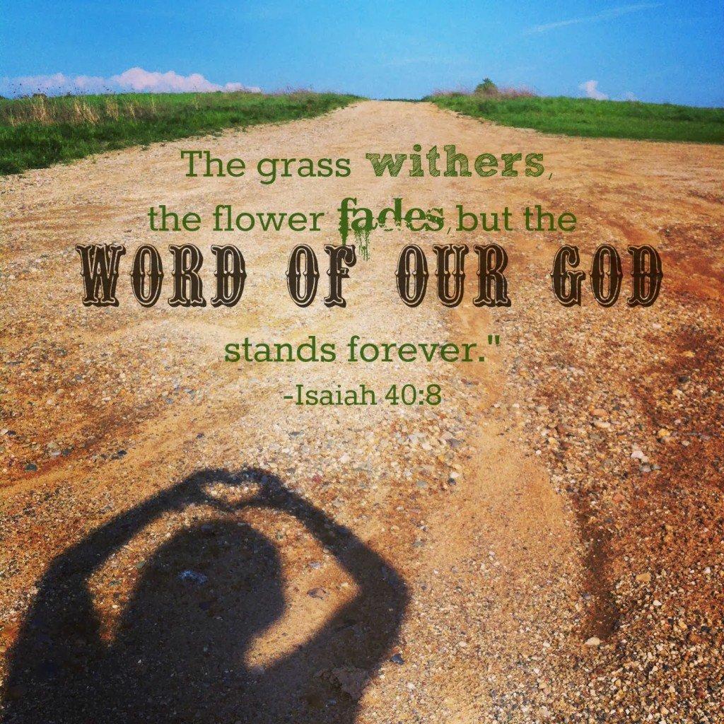 Isaiah 40:8 image by Katie M Reid