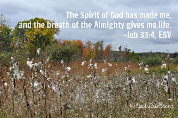 The breath of the Almighty Job 33:4