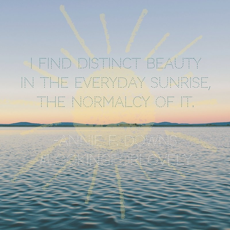 Distinct beauty in the sunrise quote by Annie F. Downs from Looking for Lovely