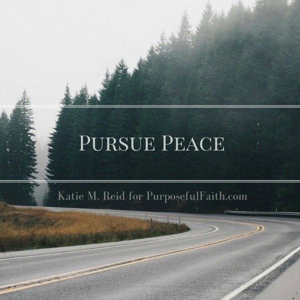 Pursue peace image for Purposeful Faith