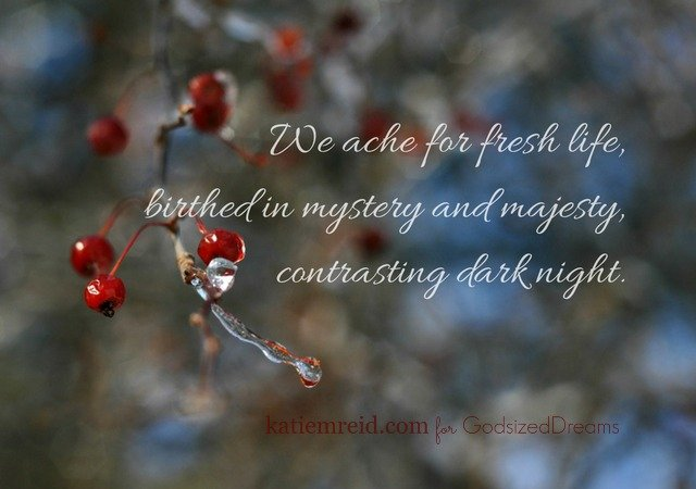 We ache for fresh life quote by Katie M. Reid