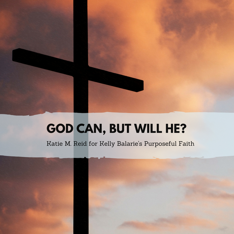 God Can But Will He quote by Katie M Reid for Kelly Balarie's purposeful faith blog