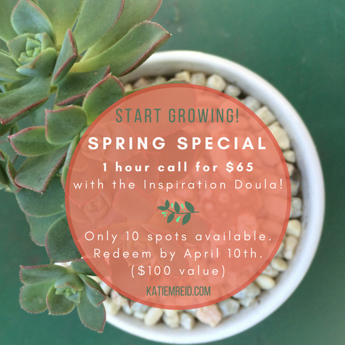Spring special consulting calls with Inspiration Doula