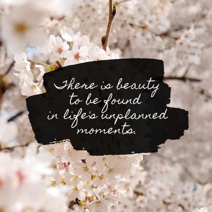 There is beauty to be found in life's unplanned moments quote by Katie M. Reid